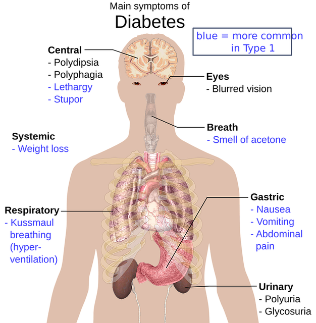 diabetes main symptoms